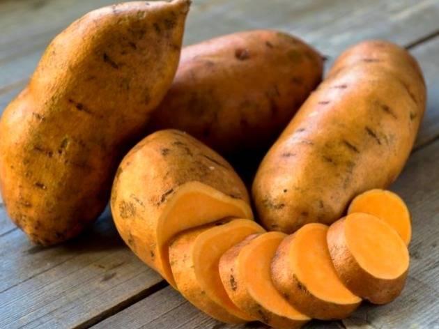مواد خوراکی در هفته چهارم به بعد میتوانند برای شما مفید واقع شوند و میتوانید آنها را به رژیم غذایی خود وارد کنید، شامل: