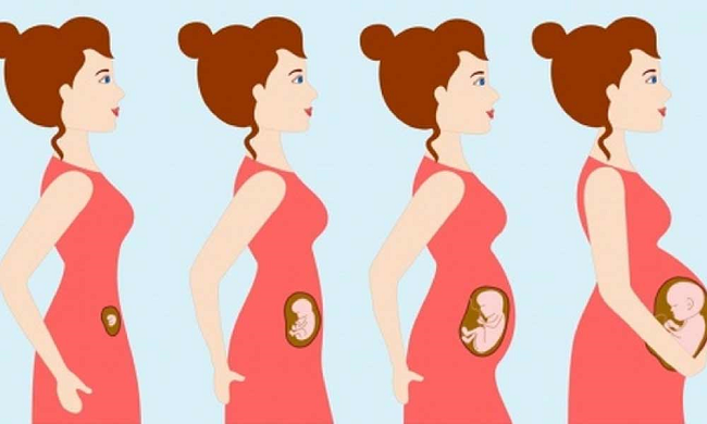آیا میتوان بعد از انجام عمل اسلیو معده باردار شد؟