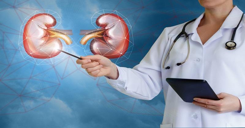 انجام آزمایش کراتینین باید توسط پزشک تجویز و در آزمایشگاه ها مورد بررسی قرار گیرد
