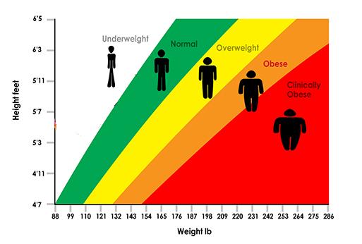 محاسبه درصد چربی بدن