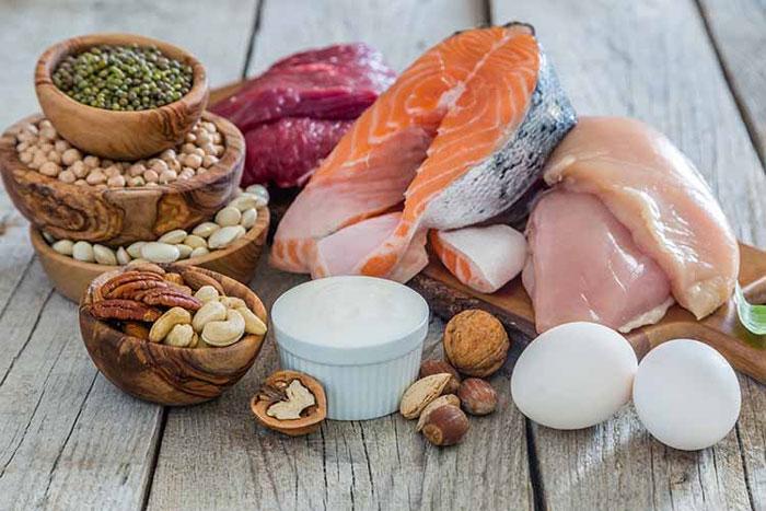 استفاده از پروتئینها در طول روز